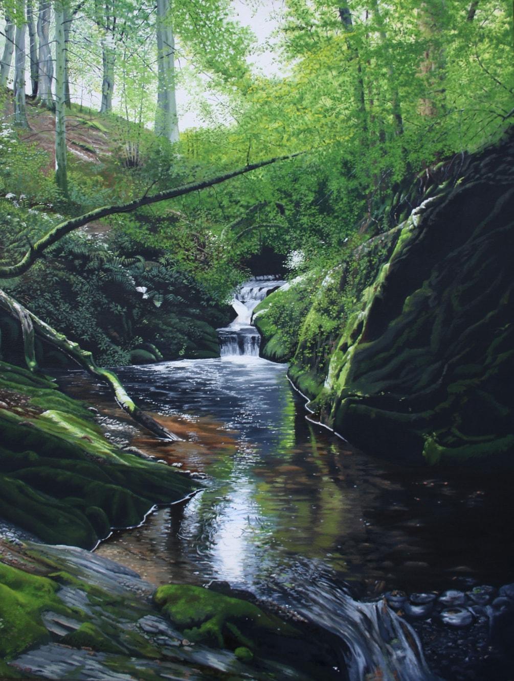 Secluded waterfall, Nant Methan, Elan Valley