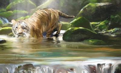 Streaming Tiger