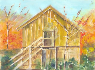 the wooden hut