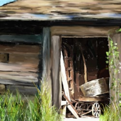 Old Field Shed