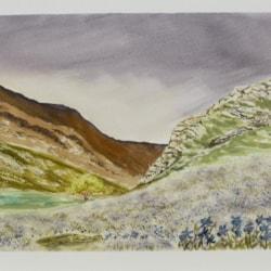 "Rannerdale Blue. watercolour 11x15"""