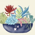 Succulents (iPad Version)