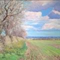 Lincolnshlre Landscape