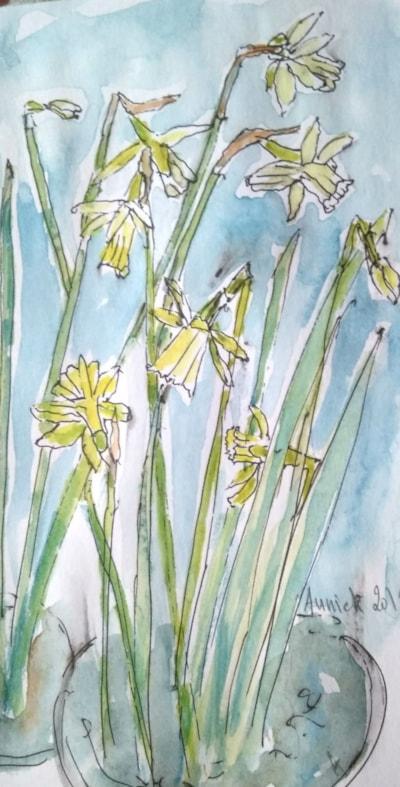 Miniature daffodils.