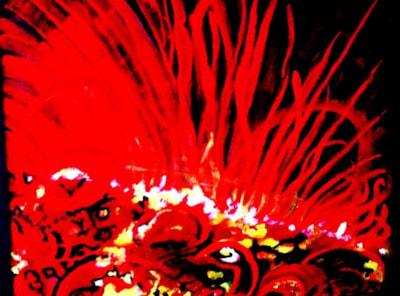 Fire on the Sun, 2