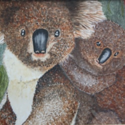 ON THE WILD SIDE OF AUSTRALIA.     KOALA FAMILY