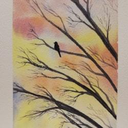 Bird on a sunset branch