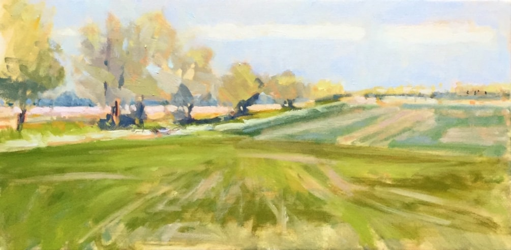 Study - Green Fields