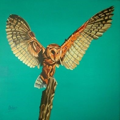 Barn Owl (No 6). Acrylic on stretched canvas, 38x38cm