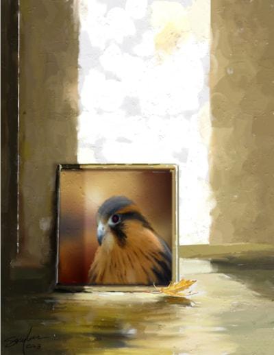 Falcon On The Floor