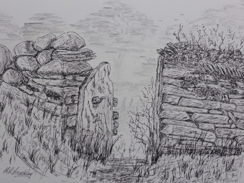 Above Elterwater. pen and ink