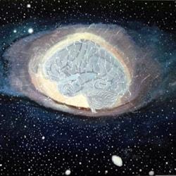 Universal Brain