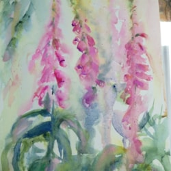 En plein air, wild foxgloves X three