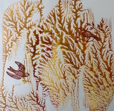 Dendritic trees