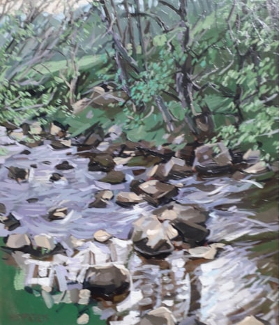 Stream in Cotterdale