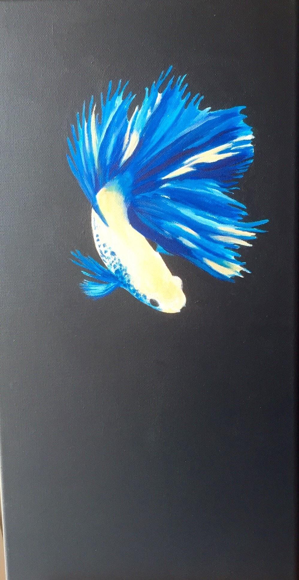 Siamese fighting fish III