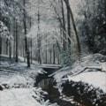Winter at Bodenham 3