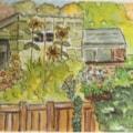 Next Doors Garden in the Summer