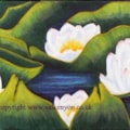 Sheelaghs water Lilies 2