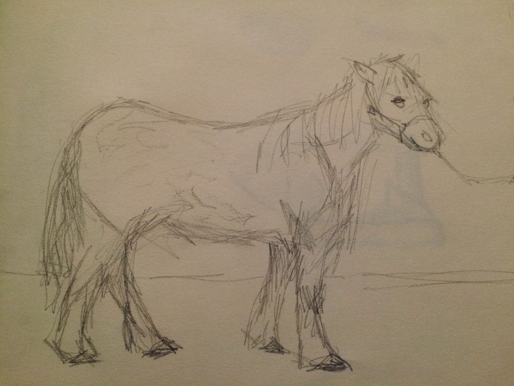 R.A. drawing prog 3, Romeo the Welsh mountain pony