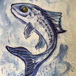March challenge...Salmon leaping