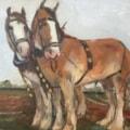 Heavy Horse Duo