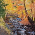Fall Comes to Clear Creek Colorado