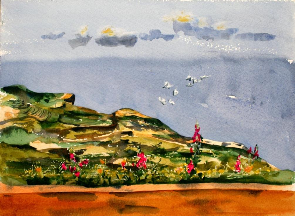 Gulls Wind and Sand