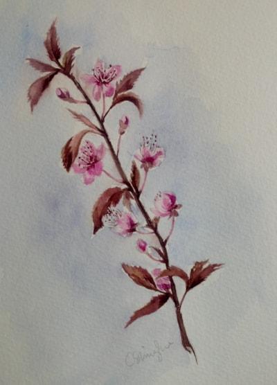 Little cherry blossom tree