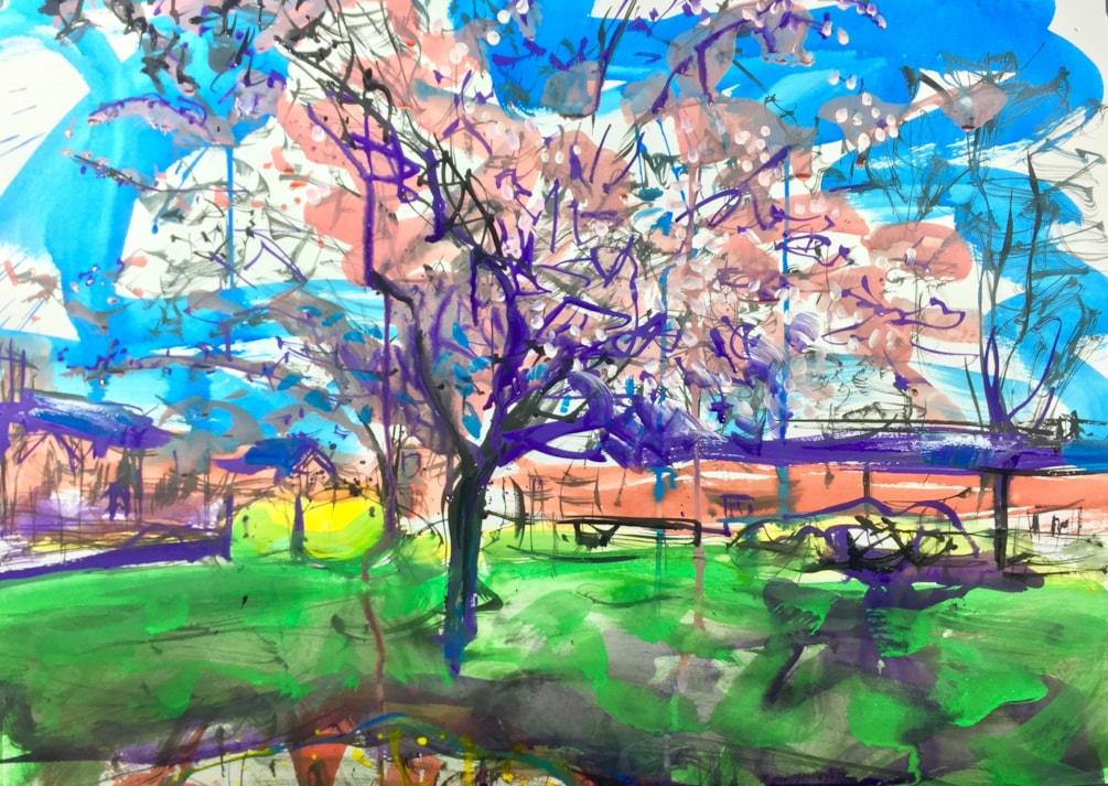 Blossom tree Spring Gardens, ink on A2