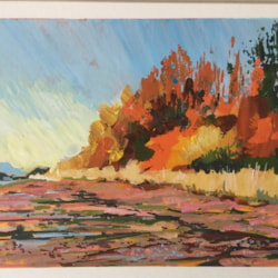 Shoreline colours