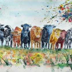 10 cows and apple blossom