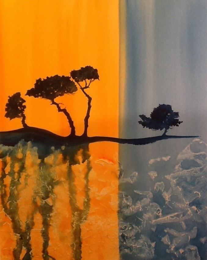 Scotts pine 2