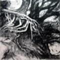 Crustacean Root