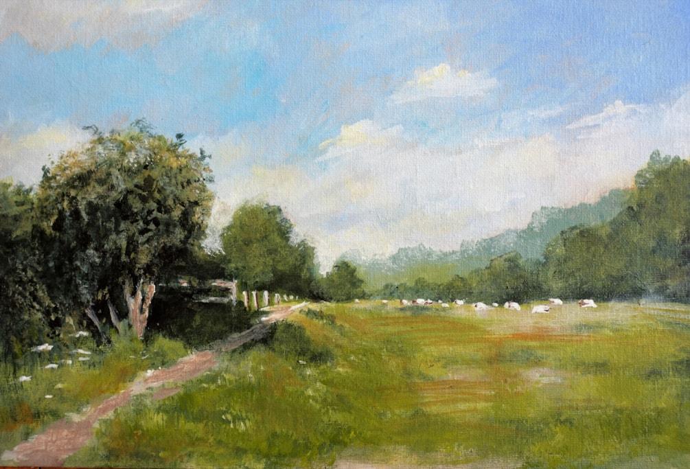 Twyford meadows