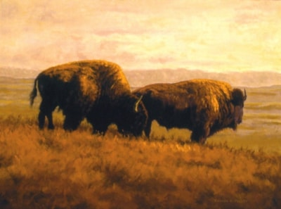 Bison Ridge