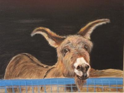 Dizzy the Donkey