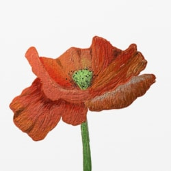 Digital poppy