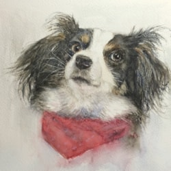 The dog with a red scarf