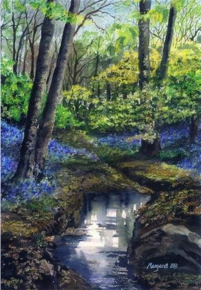 Bluebells in Ecclesall Woods.