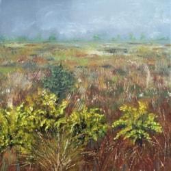 Misty morning, Bodmin Moor