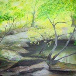 Woodland Ponds 2