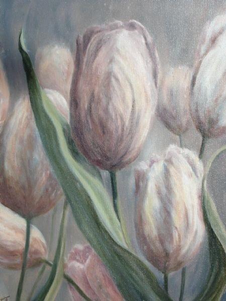 Proud Tulips