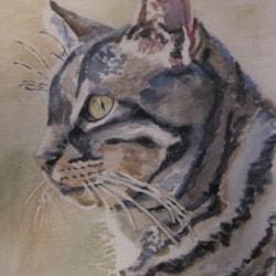 First Animal Portrait