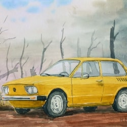 Volkswagen Brasilia and the Remains of burnt Rain Forest