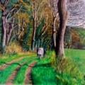 A Stroll Through Hawthorn Dene