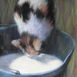 The bucket of milk