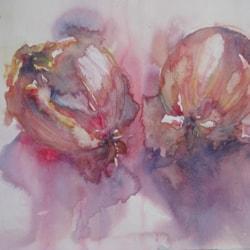 onions sketch