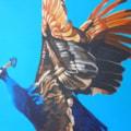Flying Peacock, (No 5) 2016. 50x50cm acrylic on board.