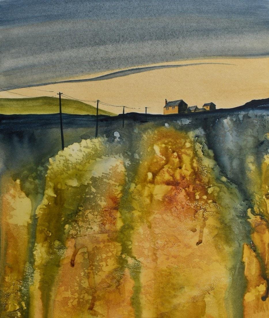 Summer evening on the moor